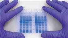 药物制剂开发 创新药制剂 仿制药策略