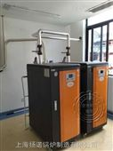 糖浆,消毒液灌装机配蒸汽锅炉蒸汽发生器