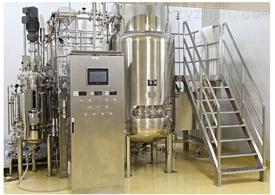 机械搅拌发酵罐