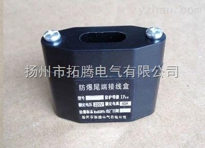 防爆两通(直行)接线盒