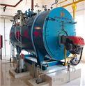 制藥工藝用氣(汽)蒸汽鍋爐