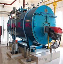 制药工艺用气(汽)蒸汽锅炉