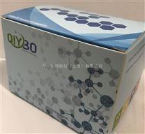 IgE检测_猪免疫球蛋白EELISA试剂盒