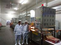 工业自动化微波肉制品解冻设备生产线