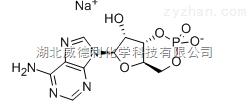 腺苷-3',5'-环单磷酸钠盐 一水合物原料中间体37839-81-9