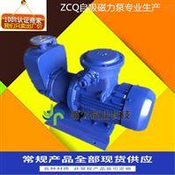 ZCQ自吸无泄漏式磁力泵