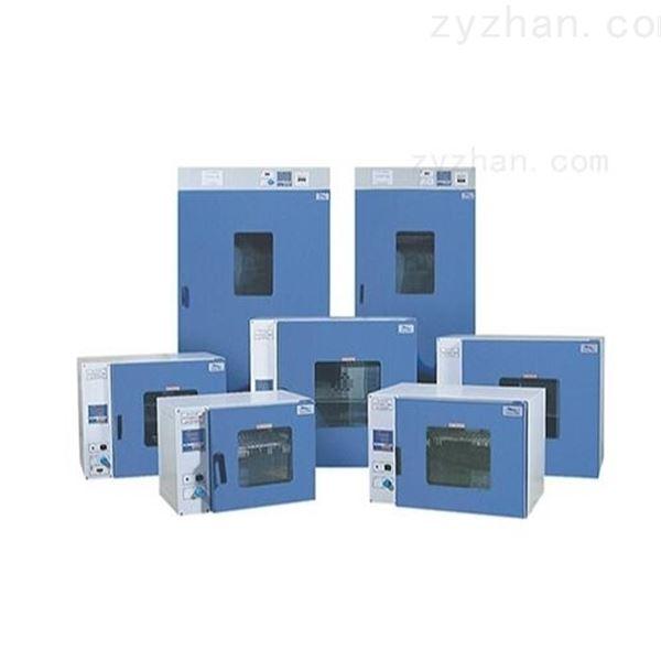 9035A实验室电热烘箱