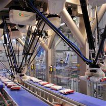 冷凍撻皮分揀包裝智能機器人工作站包裝
