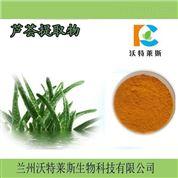 水溶性蘆薈提取物10:1  蘆薈速溶粉  現貨
