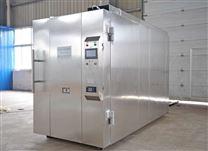 河南 环氧乙烷灭菌仪 大型灭菌器现货供应