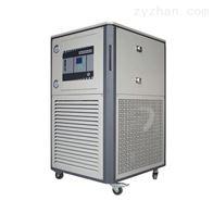 5L/10L/20L/50L/100LGDSZ高低温循环装置