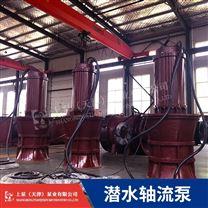 高效率500QZB-100J潜水轴流泵品牌选择